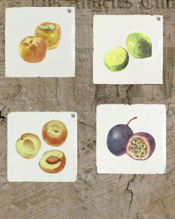 Forli Fruits|multicolour